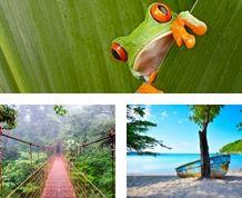 Fin de Año en Costa Rica. Naturaleza, aventura y Pura Vida